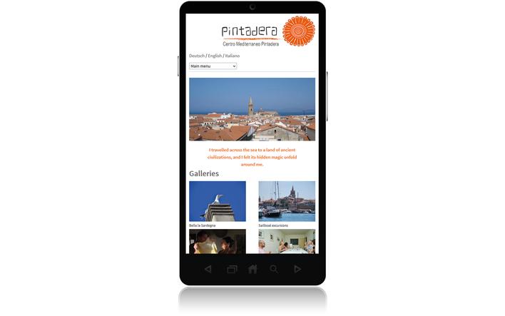 Pintadera home page